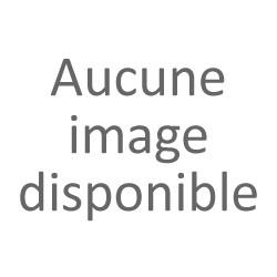 E-liquide pour cigarette électronique saveur Mangue