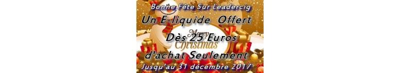 Promotion pour les fêtes de fin d'année noël et jour de l'an